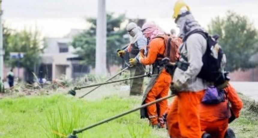 Confirmaron 5.457 casos de dengue en Tucumán