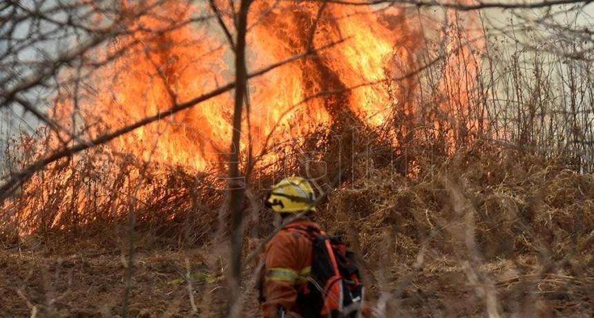 Más de 400 bomberos trabajan en sofocar varios incendios activos
